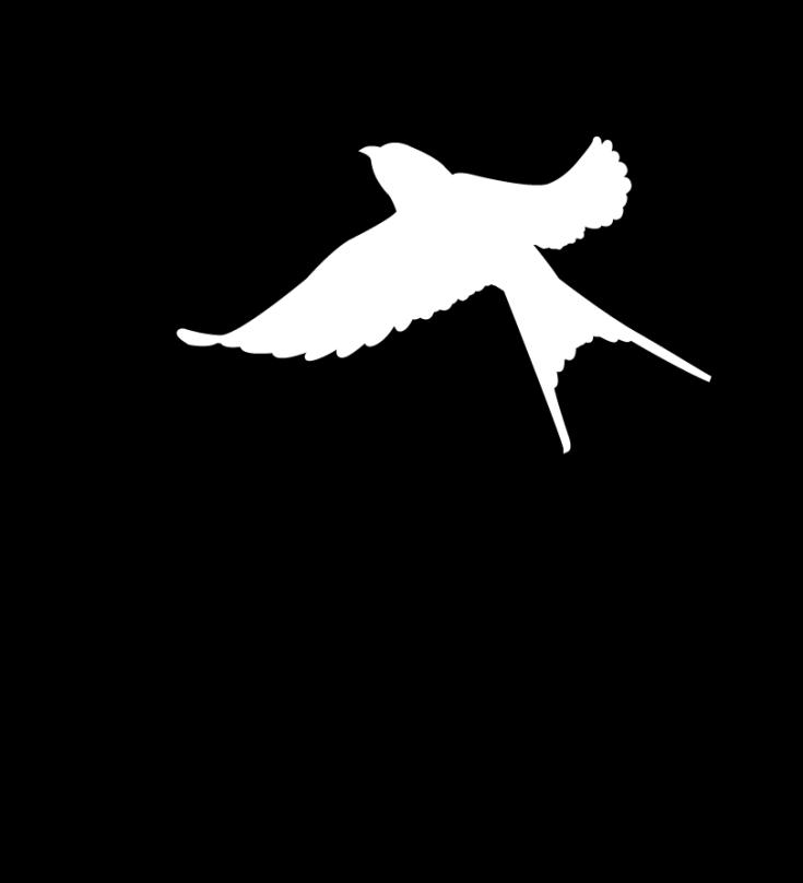 SmashedSaint_Logo_Final