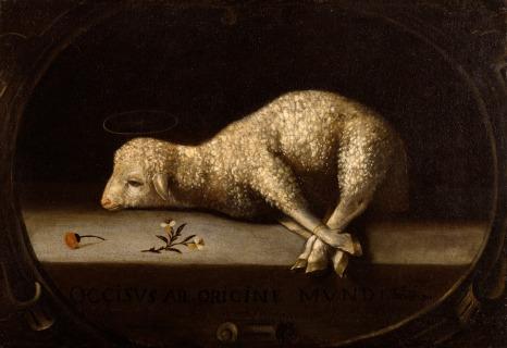 sacrificial-lamb-better1